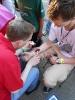 Kinderbeestfeest 2013_8